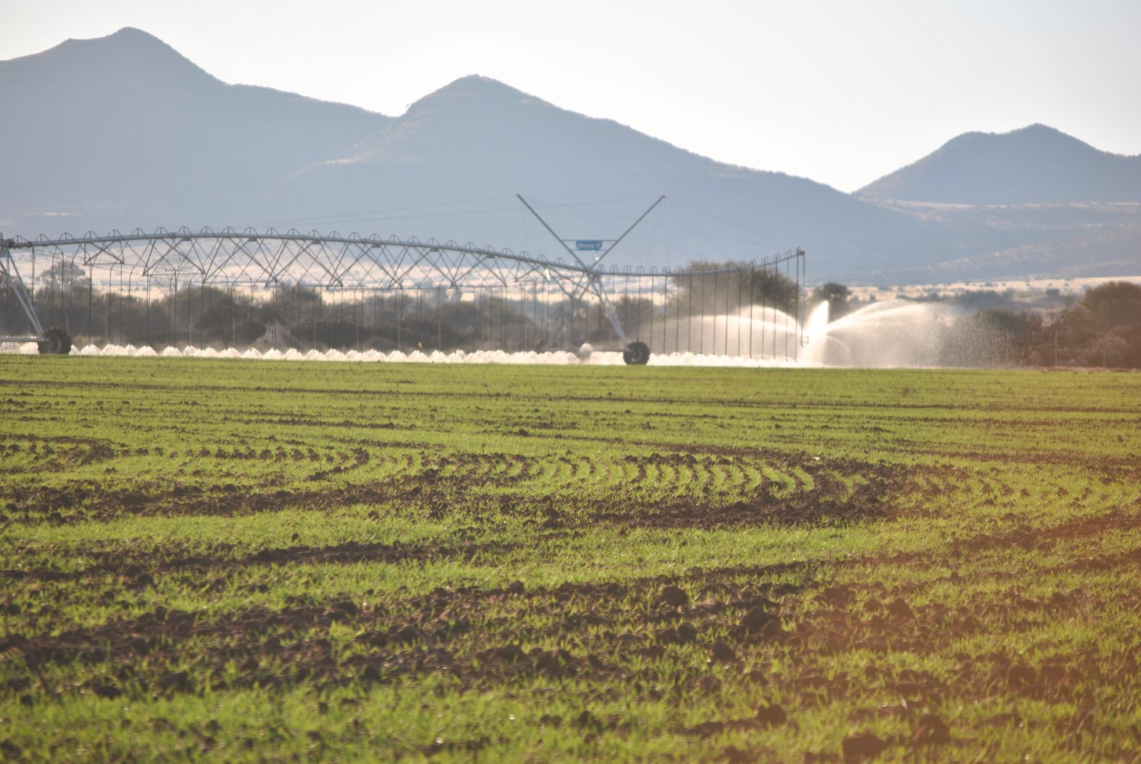 Farm irrigation system in a field with mountain background